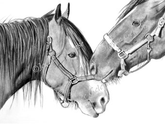 Nuzzling Draft Horses: Pencil Drawing, Printable Art WHOA Team, Close Up of Draft Horses, Horse Heads, Horse Love, Realism, INSTANT DOWNLOAD
