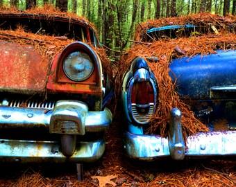 Classic 1955 Mercury's left in the Woods