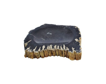 Hand made Black Fossil Wood Soap Dish
