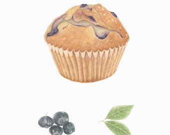 Blueberry Muffin/BOTANICAL-FOOD ILLUSTRATION/Archival Giclee Print/Farmers Market