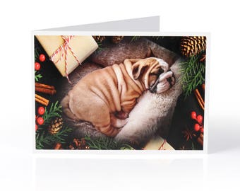 Limited Edition Bulldog Christmas Card: Puppy and presents