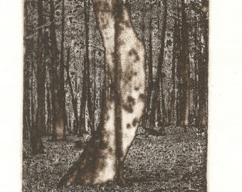 BENT TREE photo etching pencil signed and numbered