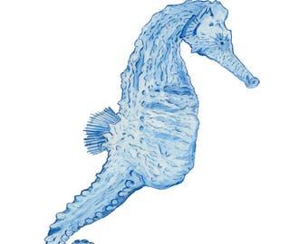 Ltd Edition - A4 & A3 Canvas Print - Original Artwork - Seahorse