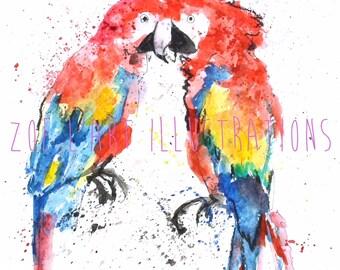 Watercolour Parrot Illustration