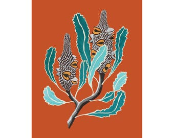 Australian Banksia Art Print / wildflower / flora / flower / painting / australiana