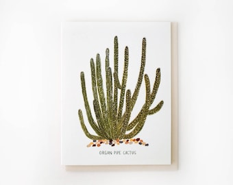 Organ Pipe Cactus Card
