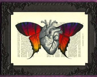 ANATOMICAL HEART illustration with vintage butterfly wings art print on antique book page dictionary 457