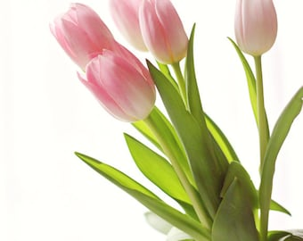 Pink Spring Tulips 1 - Fine Art Photography