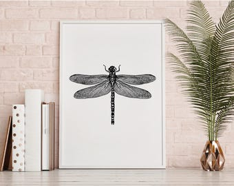 Dragonfly illustration Print, black and white, Wall Art, Printable Download, dragonfly print, hand drawn, insect, monochrome, insect poster.