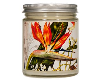 Tropical Decor, Tropical Candle, Bird of Paradise Candle, Scented Candle, Bird of Paradise Botanical, Soy Candle, Summer Candle, Candle Gift