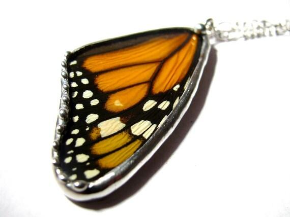 Monarch Butterfly / Real Butterfly / Butterfly Pendant / Butterfly Jewelry