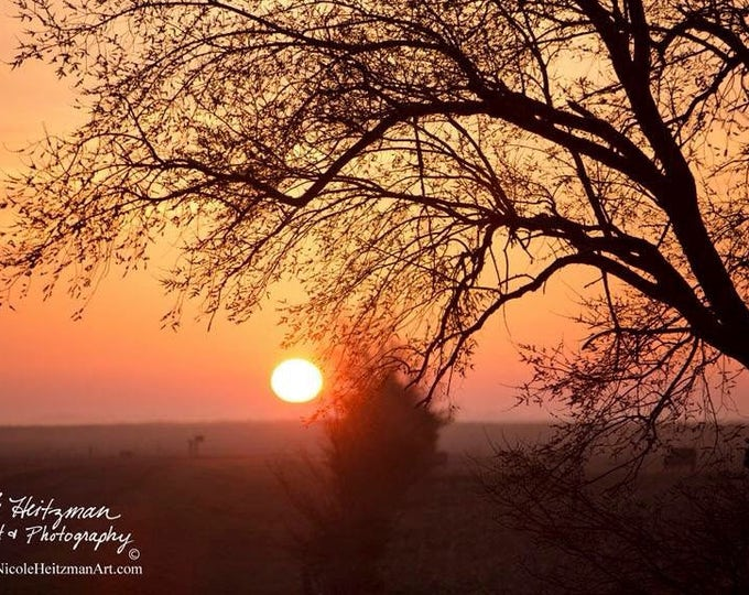 Tree Sunset photography tree silhouette spring Photo Print Gift for mom birthday gift for her women Country Decor South Dakota by Heitzman