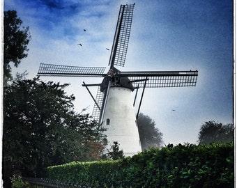 10x10 Aluminum Photo Panel: Korenmolens in de Meierij, Windmill in Netherlands