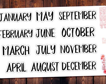 Monthly Planner Stickers, Car Planner Stickers, Erin Condren Inspired Planner Stickers, Happy Planner Stickers, B029