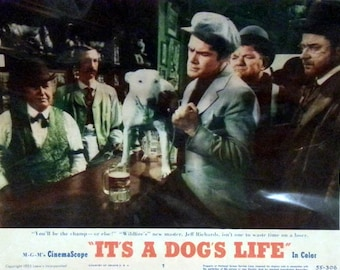 Lobby Card from the 1953 film It's A Dog's Life