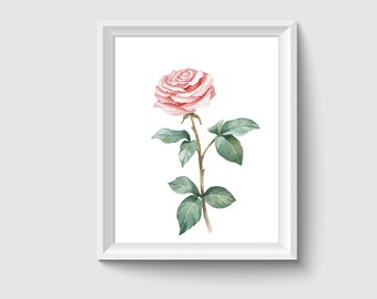 Rose Flower Watercolor Painting Poster Art Print P309