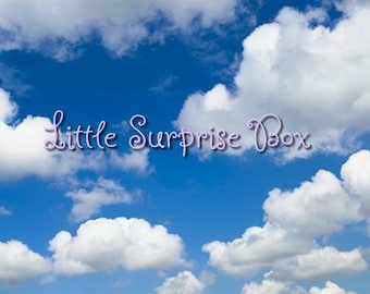 CGL Little Surprise Mystery Box/Care Package