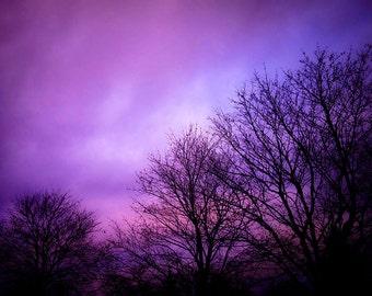 Purple Sky Print, Purple Cloud Photo, Purple Sky Picture, Cloud Picture, Sky Photography, Purple Cloud Picture, Sky Print, Purple Tree Print