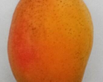 Coconut Cream Mango - 3 Gallon