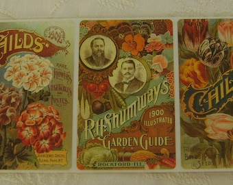 2 Sheets of 4 Images of Seed Packets from the 1900's Pressure Sensitive Stickers Brier Rose Collection