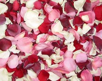 Scented WEDDING TOSS PETALS Red and Ivory Mix Fresh Freeze Dried, Bio-degradable, Real Rose Petals, Wedding Color Match, Bulk Orders