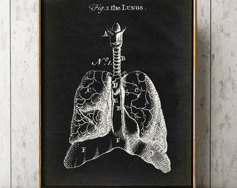 Anatomy Print, Lungs Poster Black, Heart Print, Anatomical drawing, Aged Anatomy Poster, Scientific Drawing, Medical Wall Art, Doctor