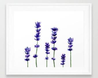 Lavender Plant. Lavender Watercolor. Purple Flowers. Botanical Illustration. Flower Print. Lilac Art. Plant Wall Poster. Kitchen Wall Art.