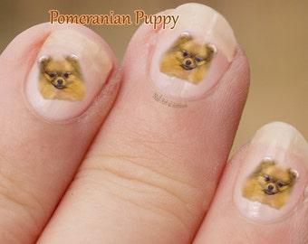 Pomeranian Nail Art,  Dog Nail Art Stickers, fingernail stickers, Pom puppy portrait, decals