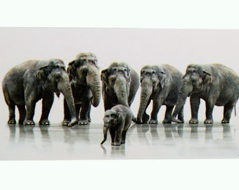 Elephants Fine Print Poster Without Frame (20 X 40 Inches)