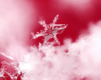 Snowflake Photograph, Winter Photography, Fine Art Print, Winter, Macro Photography, Red, Wall Art, Wall Decore, Ready to ship