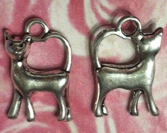 Cat Charms - 10 pc. -  Regal Cat - 3D Cat - Kitty Charms -  Antique Silver - Tibetan Charms - Animal Charms