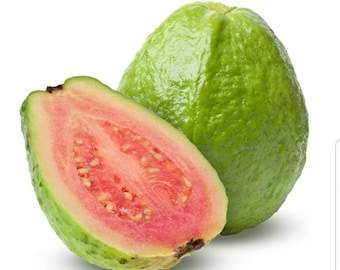 Guava Hair and Body Bundle