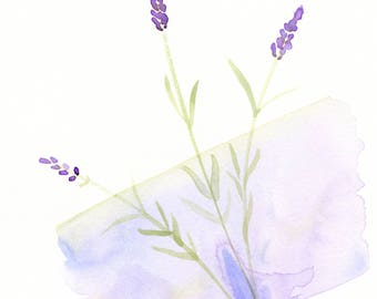 "Original watercolor flower painting: ""Lavender Love"""