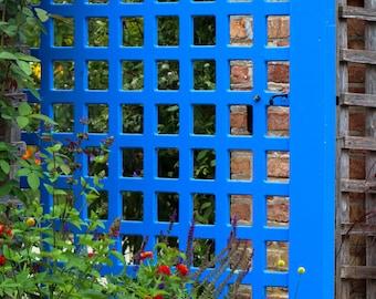 Blue Gate Door Photo Print