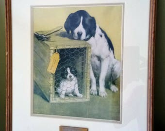 Vintage Framed Print | Last Of The Litter | Wood Frame | Dog Breeding | Dog Lover Gift