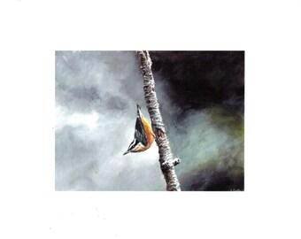 Bird print, Nuthatch print, wall art, storm sky, stormy sky, bird art, wildlife print, wildlife painting, gift for her, little bird art