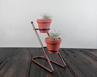 Tiered Bronze Air Plant Holder with Terracotta Pots + 2 Ionantha Airplants, Tabletop Air Plant Holder, Air Plant Display,Air Plant Terrarium