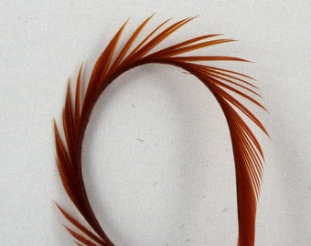 Goose Biots feathers 4 Amber   GBD  10 craft feathers fly tying feathers
