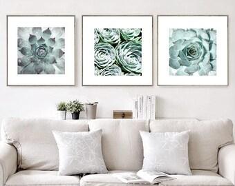 Succulent Print, Set Of 3 Prints, Succulent Print Set, Botanical Prints, Botanical Wall Art Prints, Nature Art, Digital Prints Download