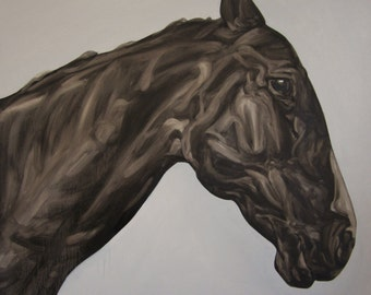 Black Horse Animal Wildlife Art Print