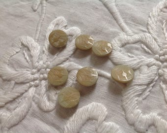 7 Vintage Vegetable Ivory Buttons. Tagua Nut. Deco Design. Softest Color.