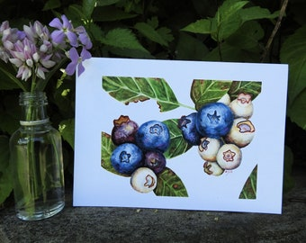 Blank Note Card - Blueberries - Blueberry Watercolor Print