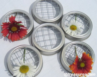 6 Flower Frog Mason Jar Lids for Mason Jar Flowers