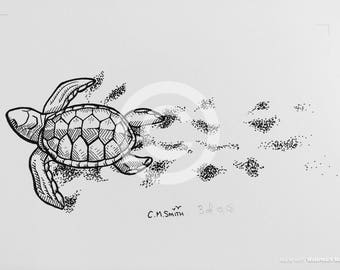 Turtle with Trail Limited Edition Print