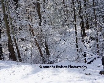 Country Forest Winter Snow Grill Digital Download 4655x2751