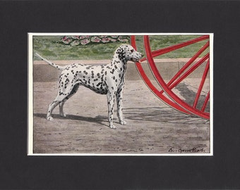 Dalmatian 1919  Vintage Dog Print by Louis Agassiz Fuertes Small Print of Signed Painting Mounted with Mat Dalmatian Print Dalmatian Dog