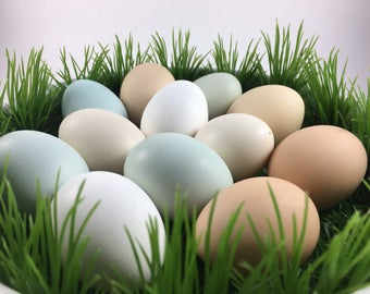 Eggs, Blown Bantam (Small Chicken) Eggs, Eggs for Ornaments, Easter Eggs, Banty Eggs, Eggs for Crafts