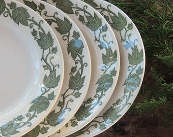 Royal China English Ivy Bread and Butter Plates Set of 4 Rustic Modern Replacement China