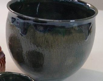 Plantes en pot en céramique