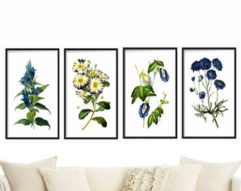 Botanical Print Set Of 4   Botanical Illustration   Botanical Art Print    Art Prints Canvas